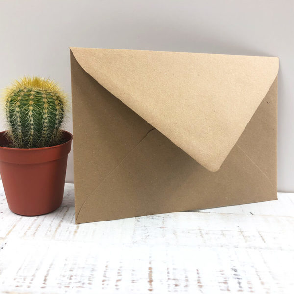 Briefumschlag aus Kraftpapier, der an einem kleinen grünen Kaktus lehnt, vor weißem Hintergrund.