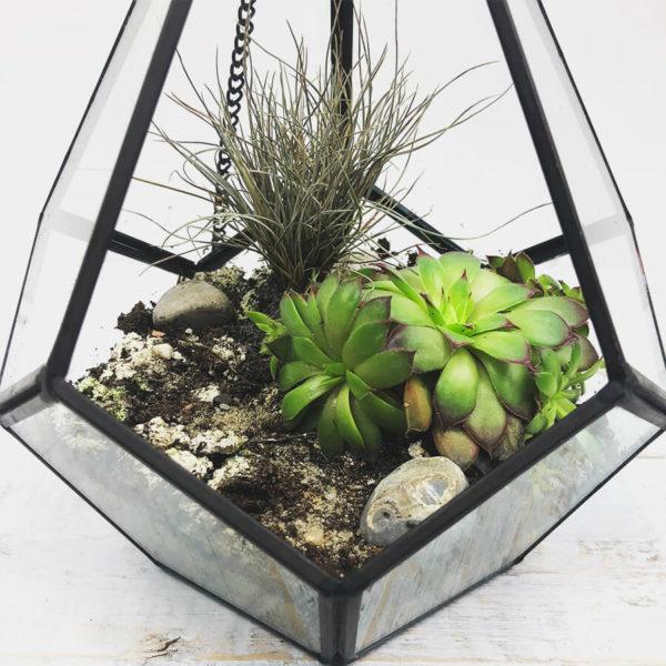 Hängende Vase aus Metall und Glas, die als Terrarium für Sukkulenten genutzt wird.