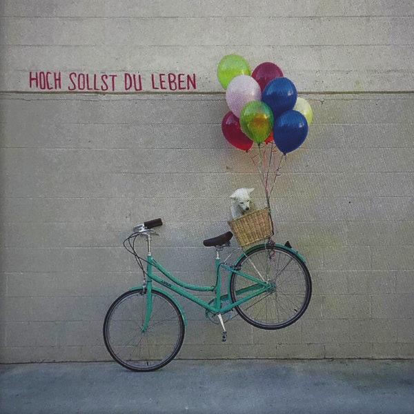 """Nahaufnahme der Polaroid Karte mit Aufschrift """"Hoch sollst du leben"""" und Fahrrad mit Hund im Korb, das von Luftballons in die Luft gehoben wird."""